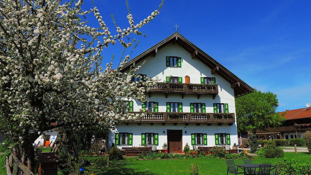 Herrliche Frühlingszeit auf dem Bernwieserhof